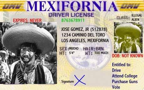 Mexifornia Driver's License