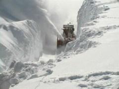 Myth Blaster: Category 5 Blizzard - Emergency Weather Bulletin