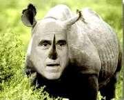 Mitt Romney Shows True Self - Moderate-RINO, Not Constitutionalist-Reformer