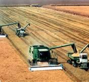 Farming_02