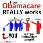 Obamacare works