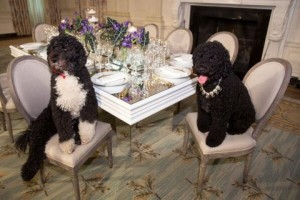 Obama-dogs-e1392135167637